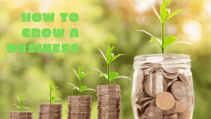 how-to-grow-a-business